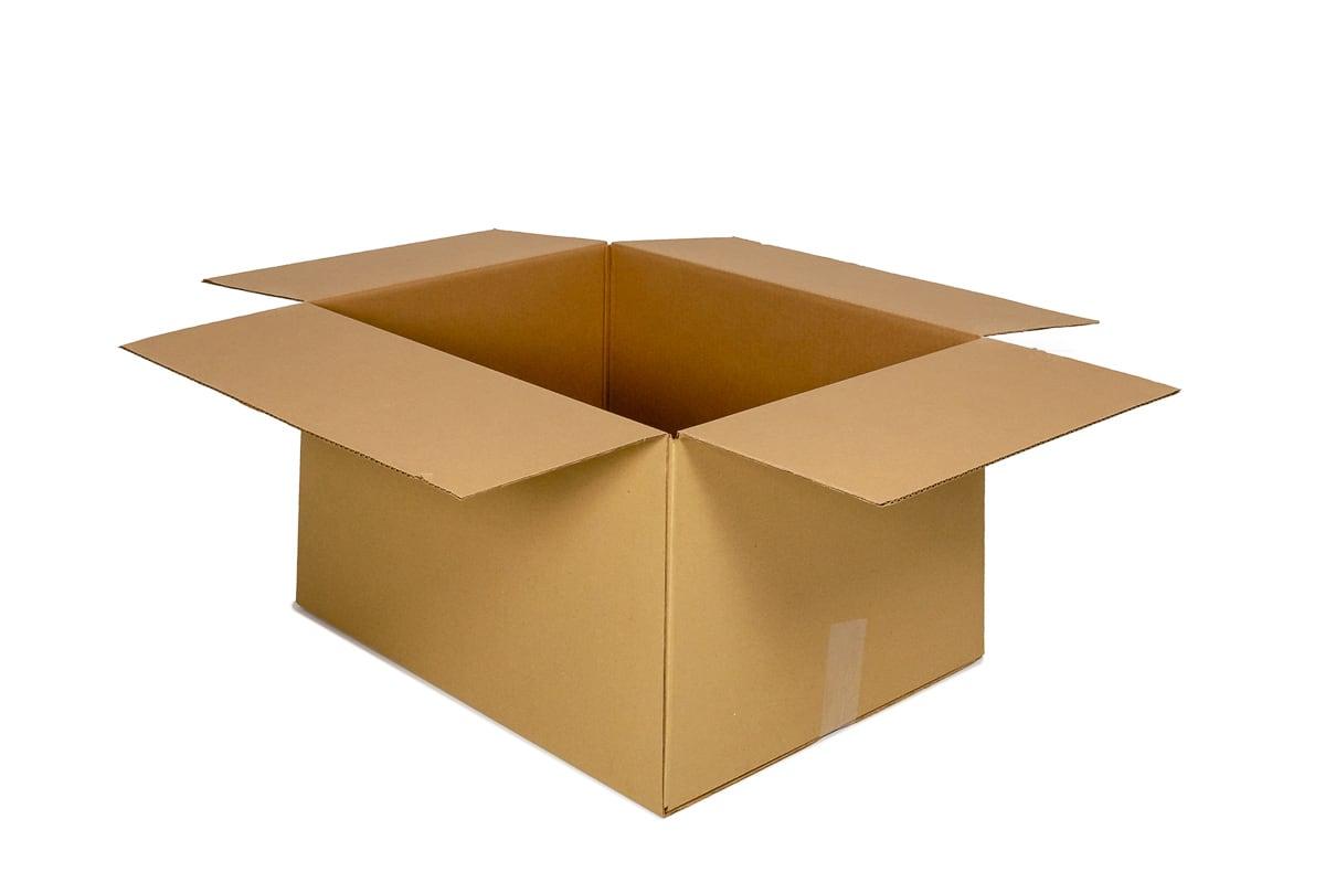 Kartonnen doos - 310 x 220 x 100mm (dubbele golf)